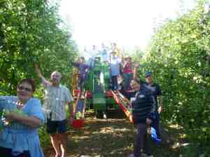 Apple pickers who gave us the most delicious apples