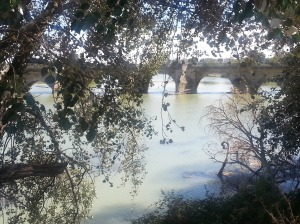 A bridge over the Ebro River