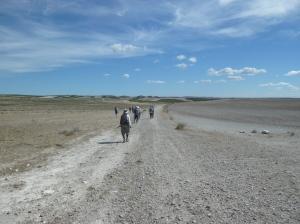 Kay Quisenberry  walking through the barren landscape