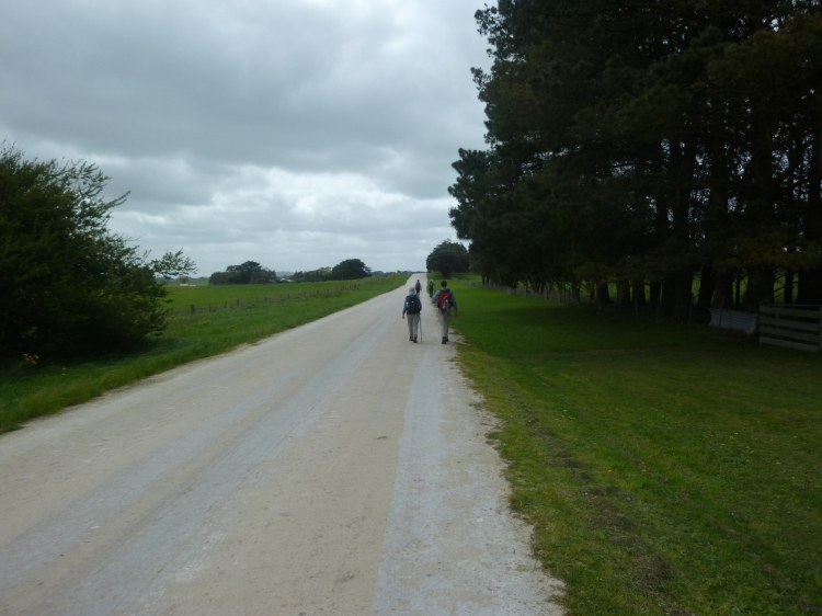 The limestone road, typical in this area