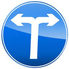 The Trailze app