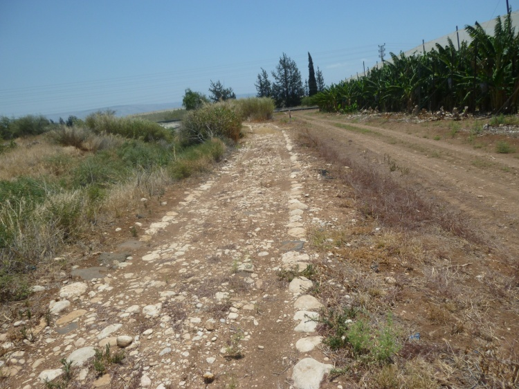 Part of the trail today was on a Roman road