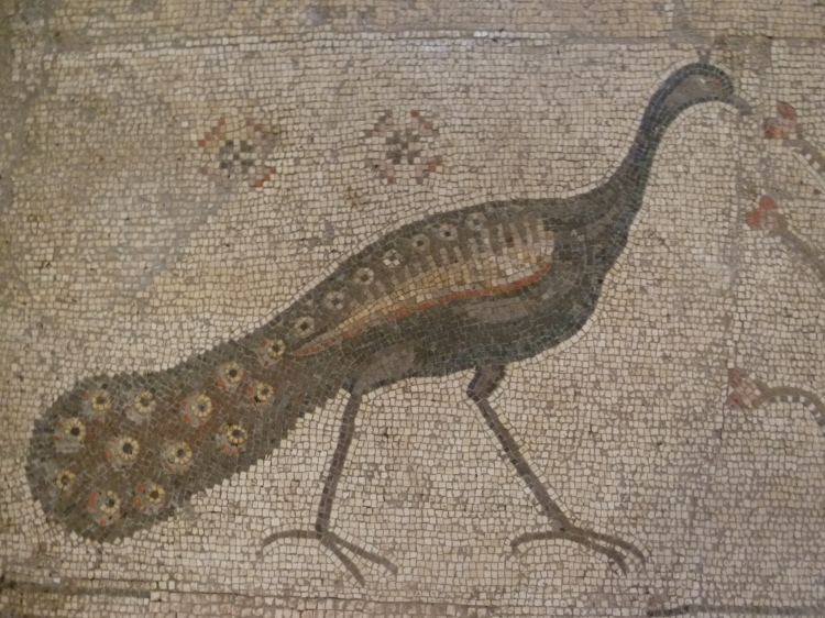 Peacock Mosaic — symbol of Jesus